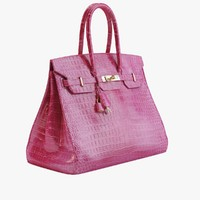 Hermes - Birkin Crocodile Bag