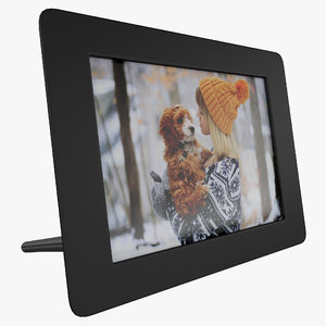 3dsmax digital photo frame aluratek