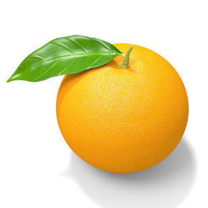 fruit orange 3d model