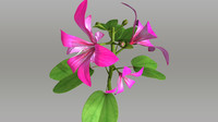 3d model trees flowers