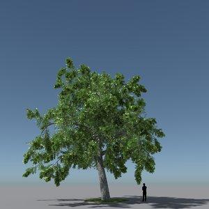 free max mode tree oak v3
