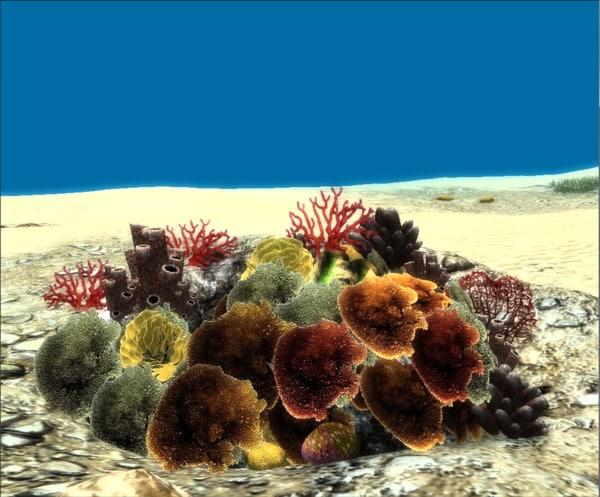 corals pack 3d max