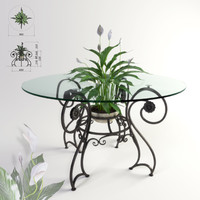 Forged table and plant Spathiphyllum