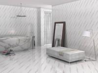 3ds max bath room
