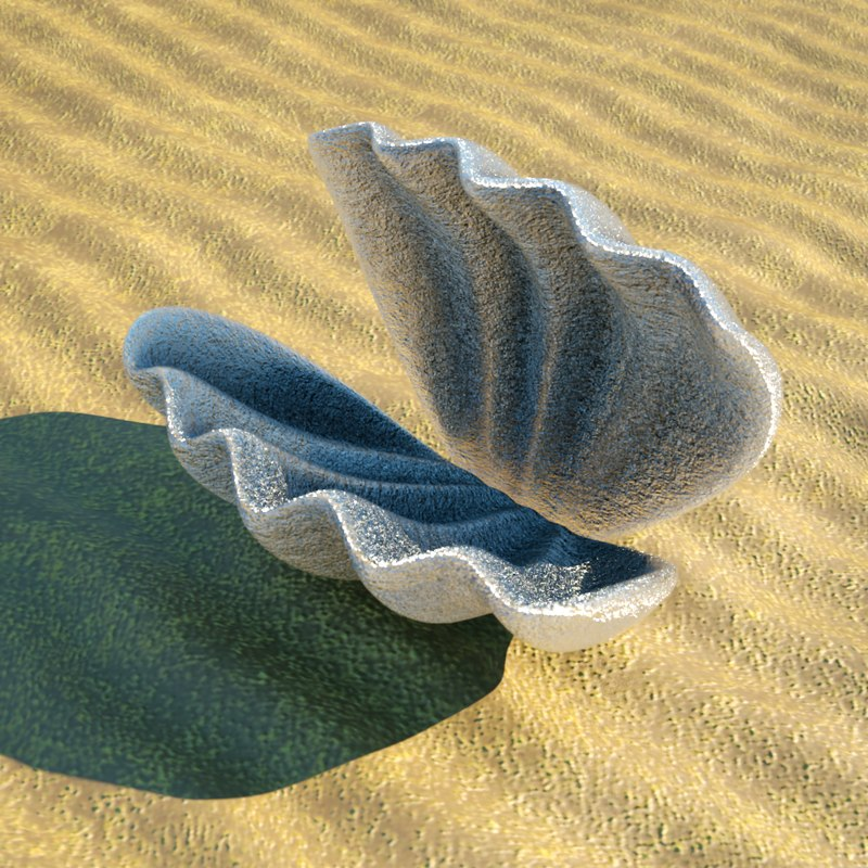 3d model clam shell