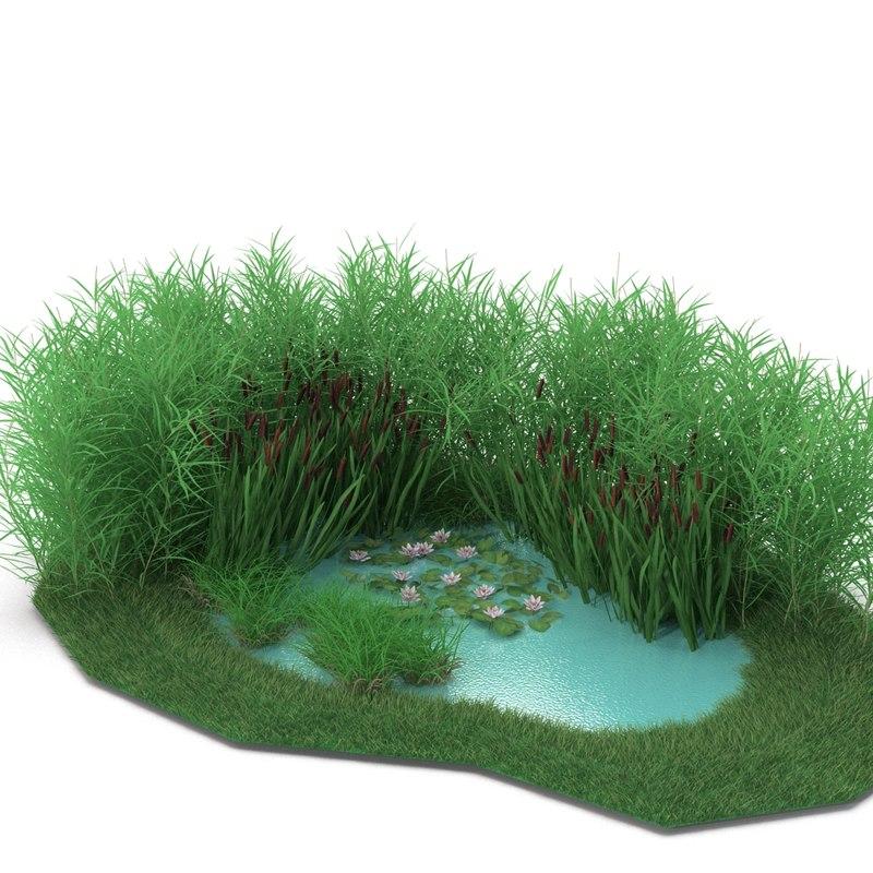 max pond