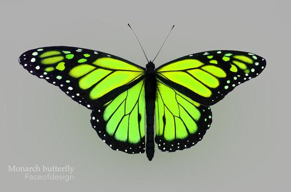 cinema4d green butterfly