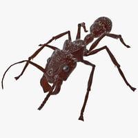 max bullet ant fur