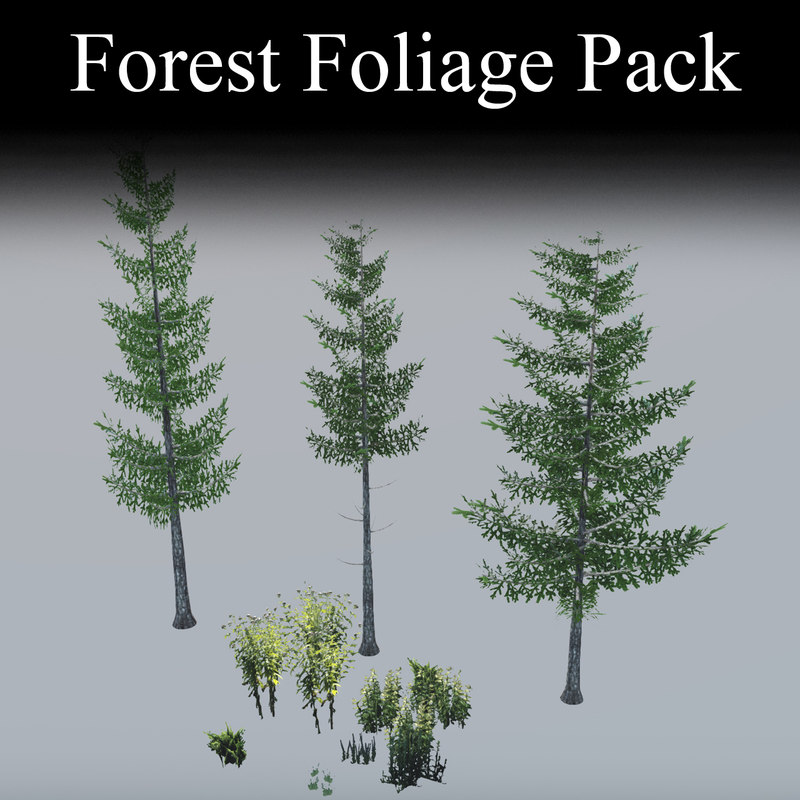 3d model forest foliage