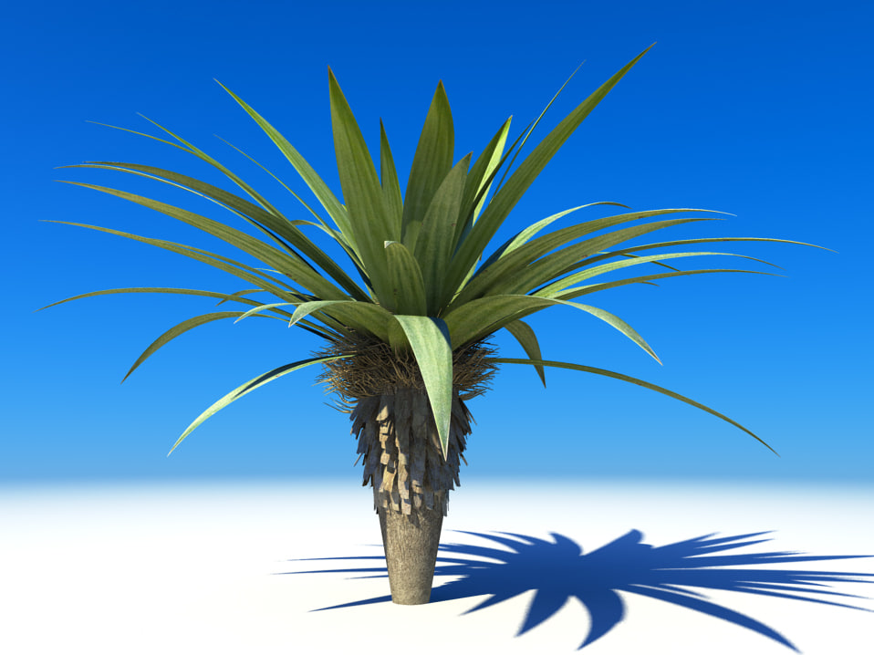 palm small 3d model
