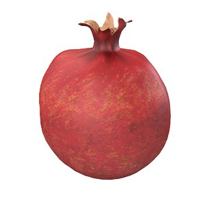 3d pomegranate granat