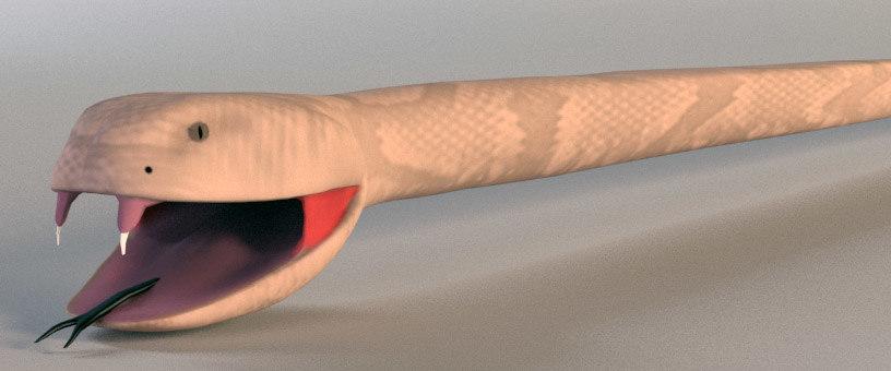 cartoony rattle snake 3d model