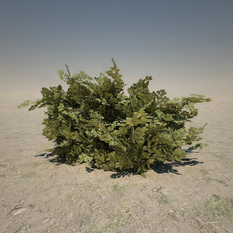 3d model large bush