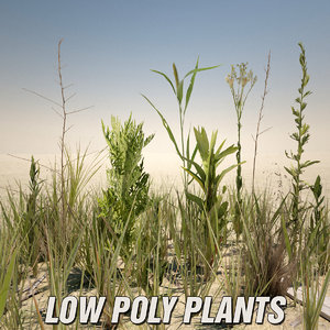 grasses weeds games 3d model