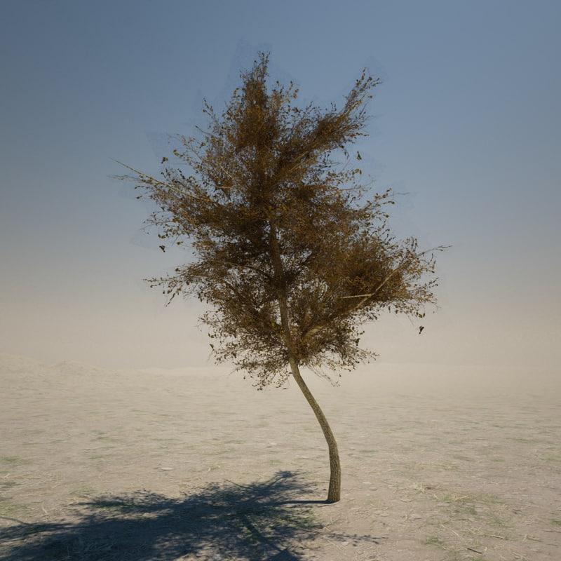 3d 3ds palm tree