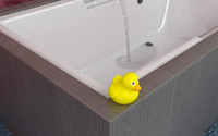 max bath tub