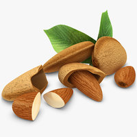 3dsmax realistic almond