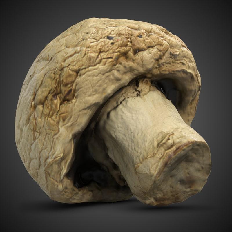 mushroom agaricus campestris 5 3d 3ds