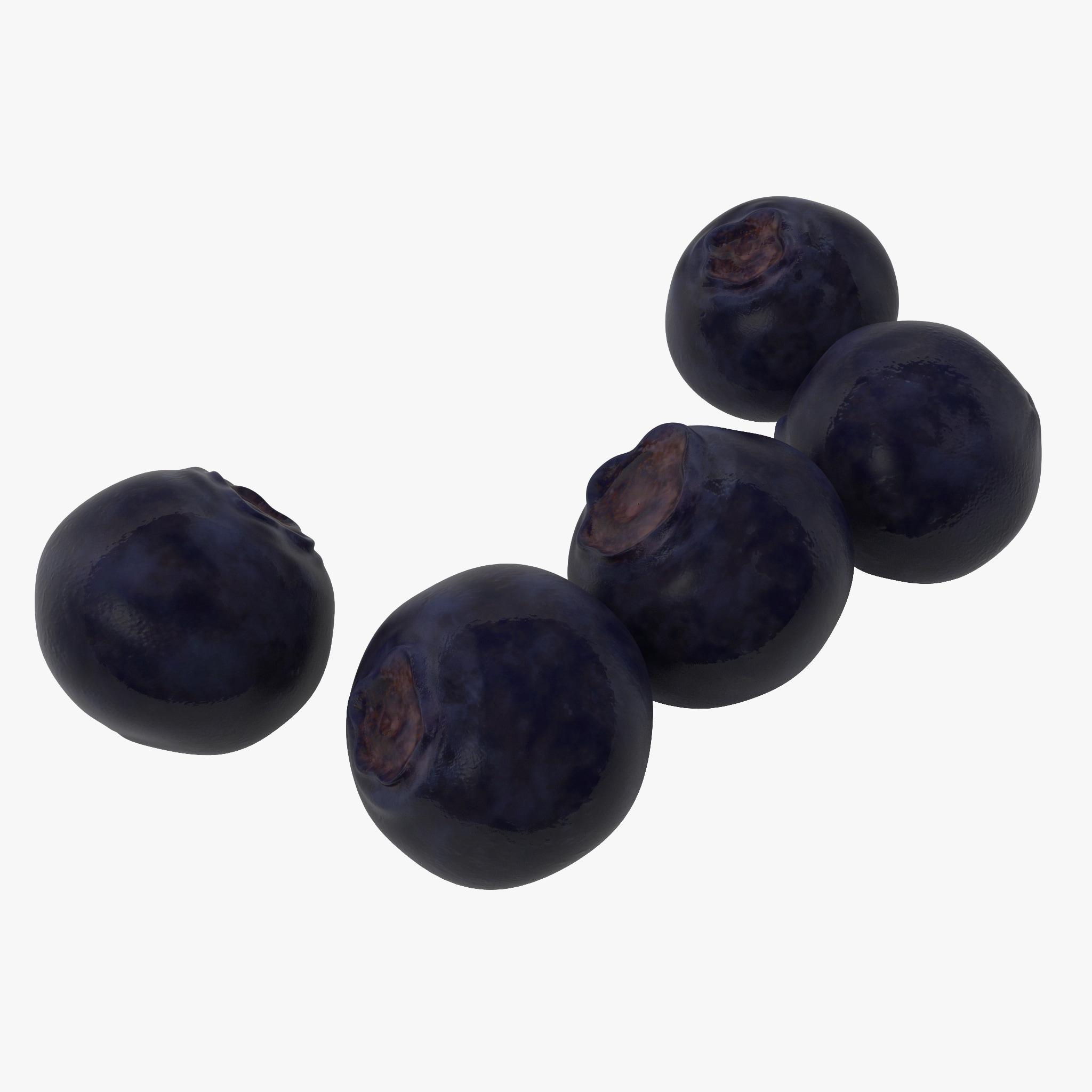bilberries berries 3d model