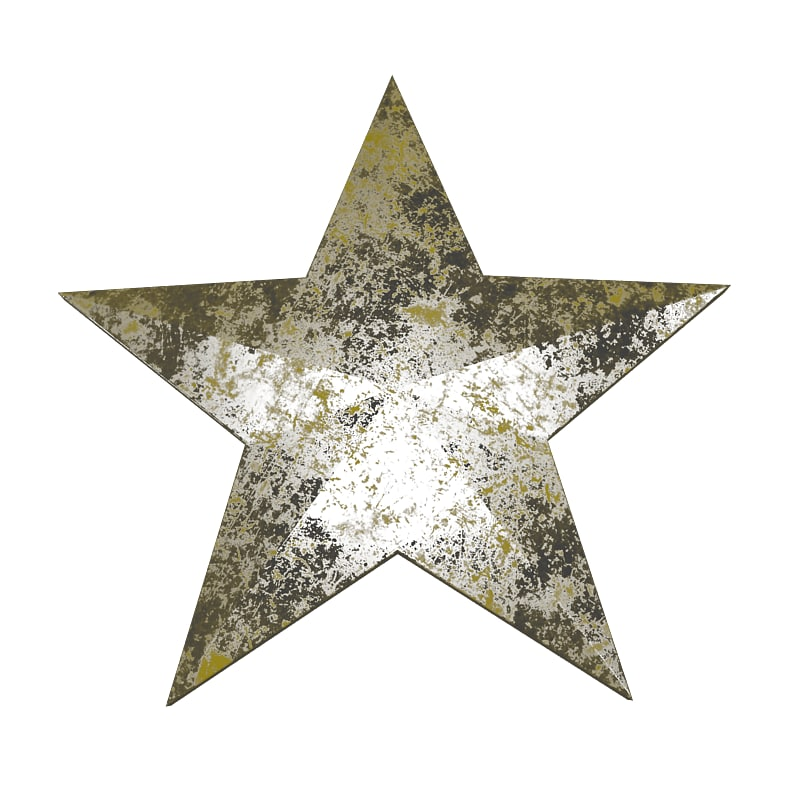 3ds max star