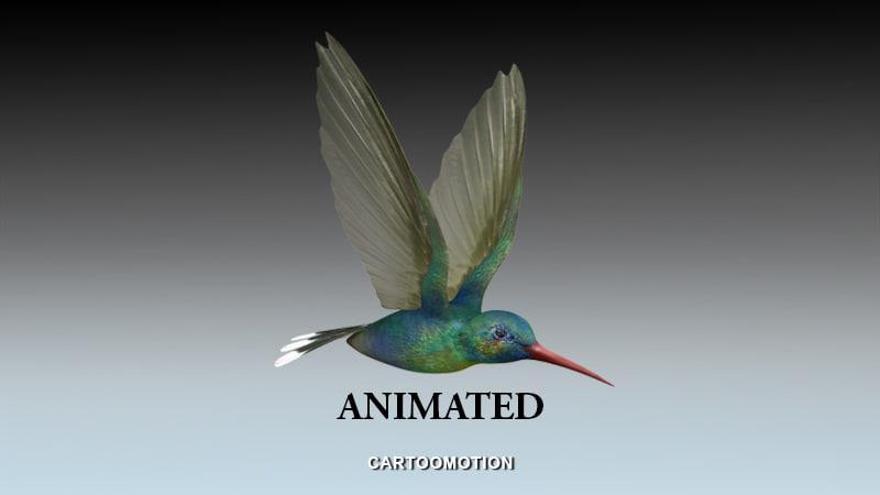 3d humming bird model