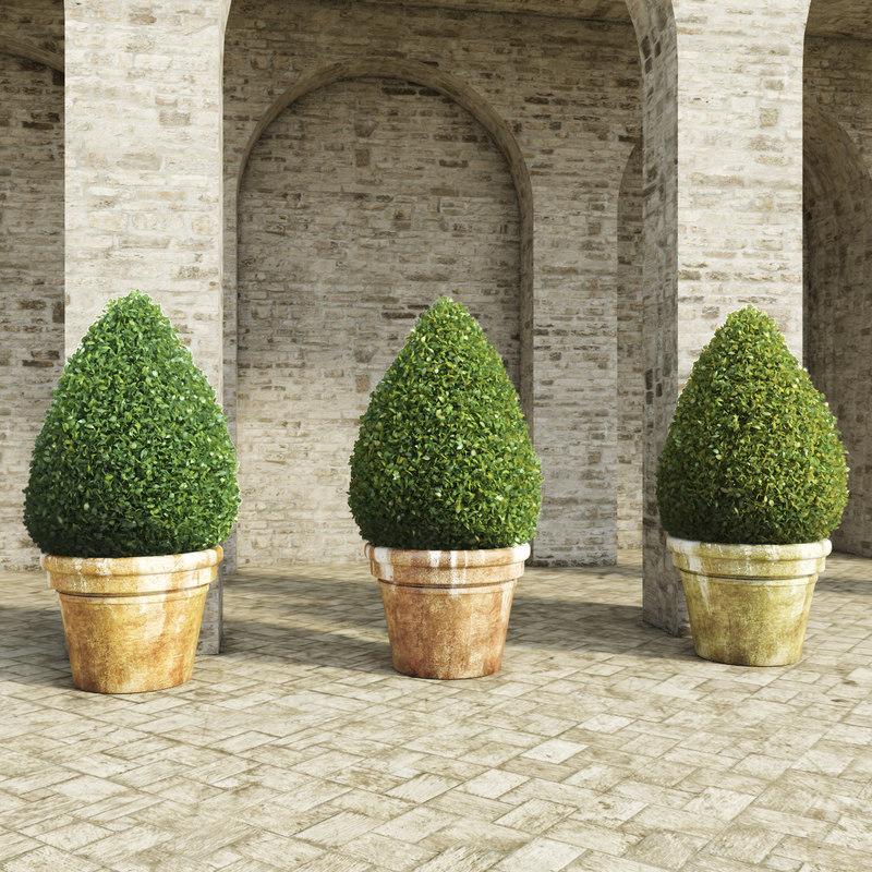 shrubs pots 2 3d max