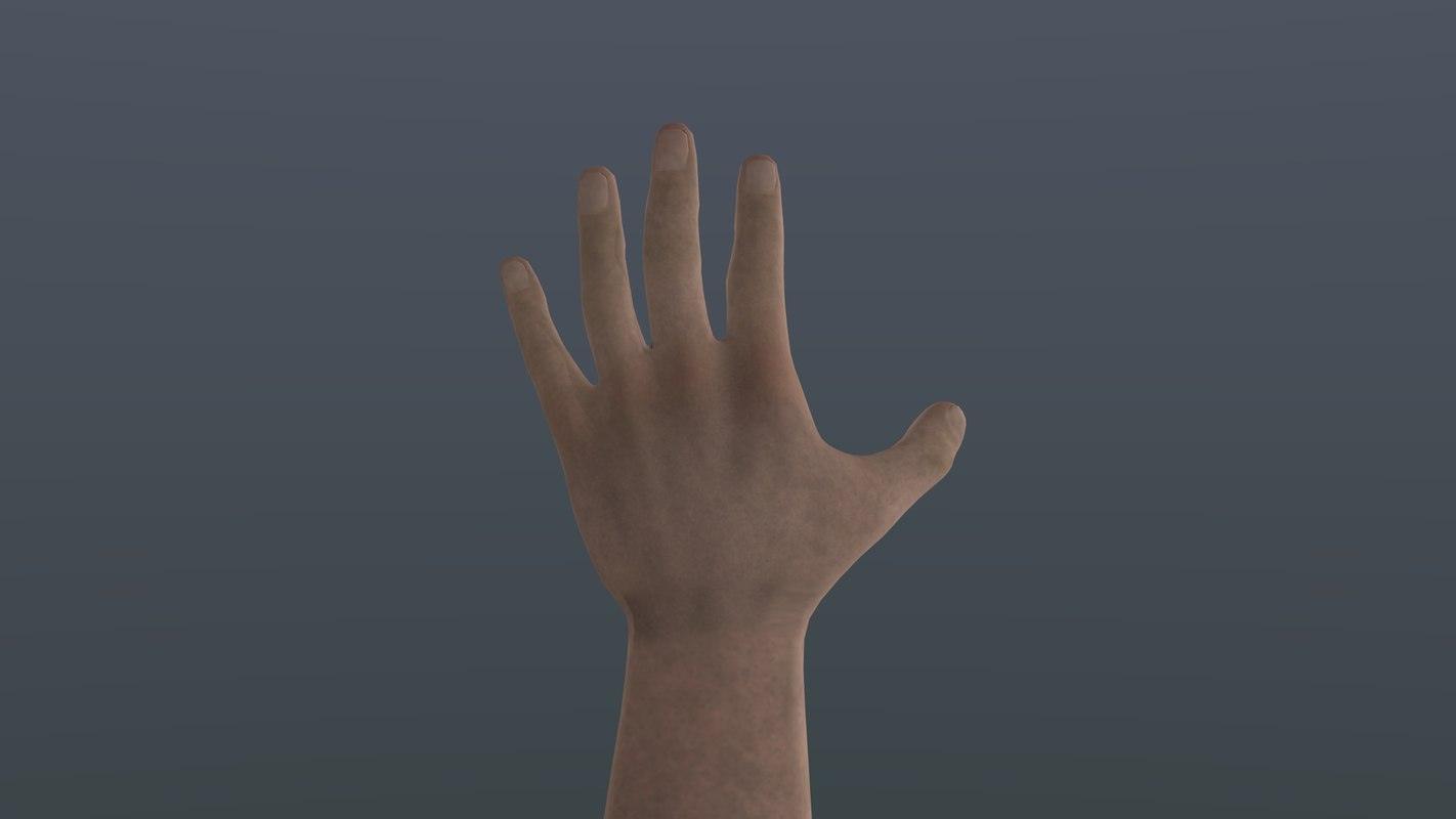 hand arm rig 3d model