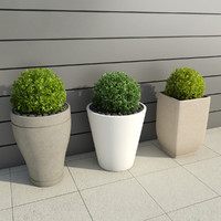 3d model of shrubs pots 3