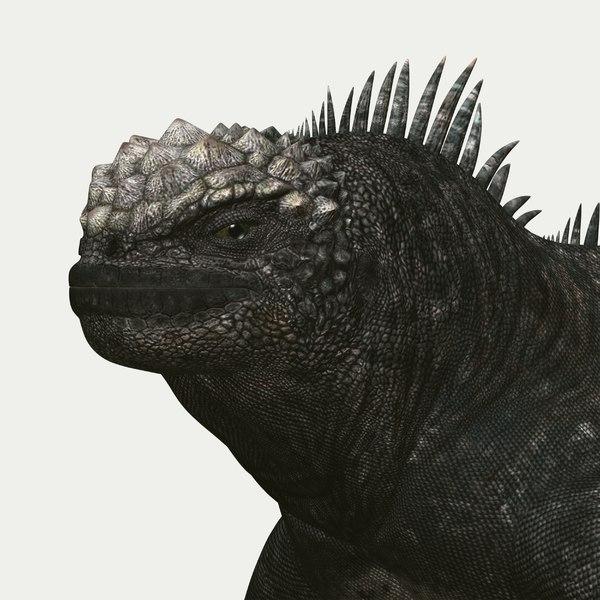marine iguana 3d model