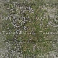 grass and gravel.jpg