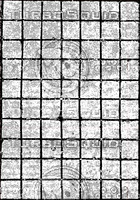 colorless cement squares.jpg