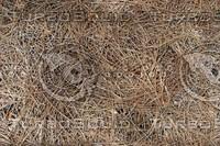 thin hay.jpg