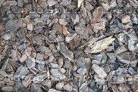 light wood chips.jpg