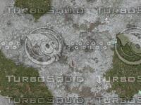jbooth-seemless-lichenandmoss.jpg