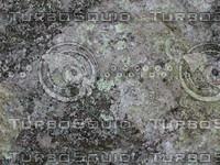 jbooth-seemless-lichenrock1.jpg