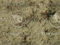 JBooth-Seemless-SandyWeeds.jpg