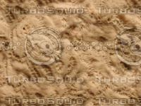 JBooth-Seemless-coral.jpg