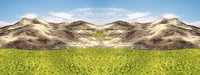 landscape environment map.jpg