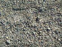 small pebbles2.jpg