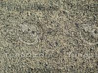 small pebbles3.jpg