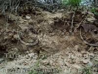 mud ground.jpg