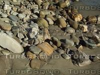 sandy rocky beach.jpg