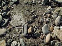 pebble rocky ground.jpg