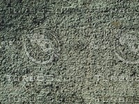 dry dirt detail.jpg