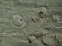 sandy ground.jpg