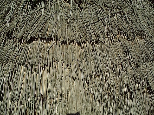 Texture Other Thatched Roof Hut