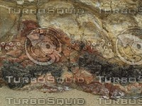 cracked rock detail.jpg