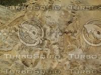 worn rock slab.jpg