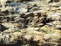 rough riverbed rock.jpg