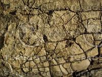 craggy cracked stone rock.jpg